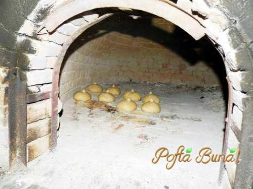 paine-neagra-pofta-buna-gina-bradea (1)