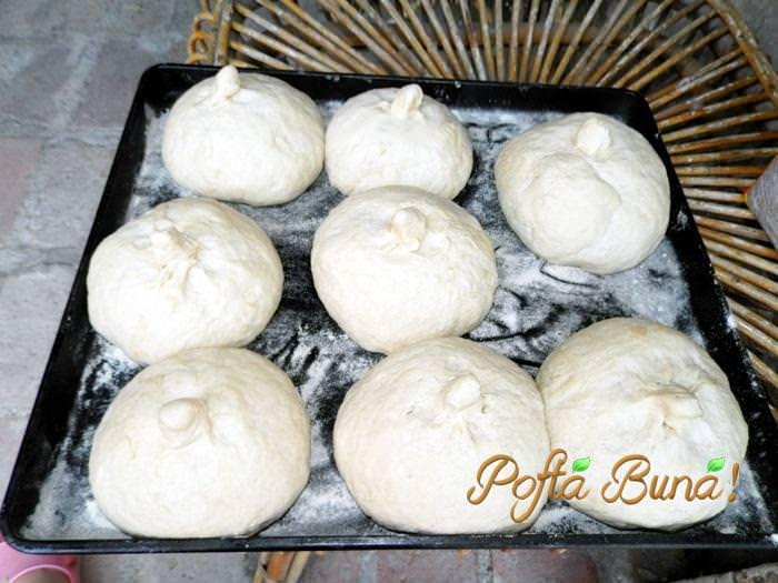 paine-neagra-pofta-buna-gina-bradea (2)