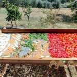 Vegeta de casa (cu legume uscate)