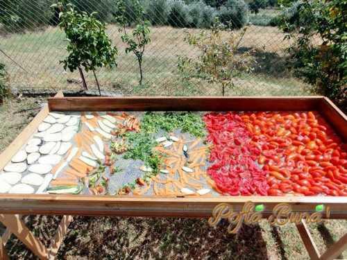 Pofta buna gina bradea vegeta de casa cu legume uscate.jpg 500x375 - Vegeta de casa la sare (fara conservanti)