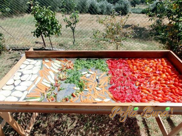 Vegeta de casa cu legume uscate