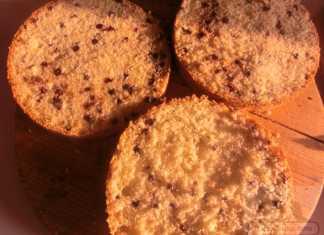 pofta-buna-gina-bradea-tort-ganache-ciocolata-smochine.jpeg (2)