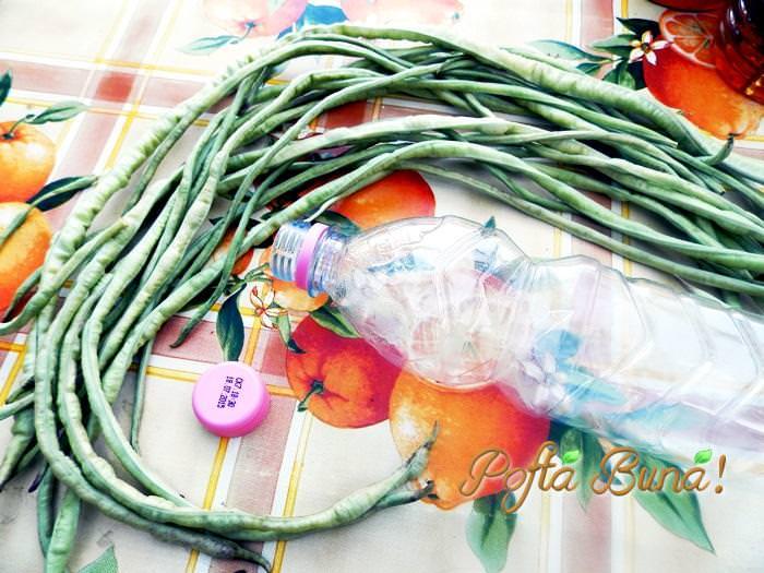 fasole verde pentru iarna fara conservanti pofta buna gina bradea 2 - Fasole verde pentru iarna