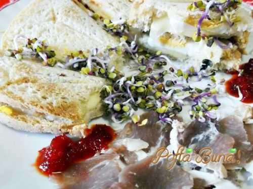 sandvis-pofta-buna-gina-bradea (3)