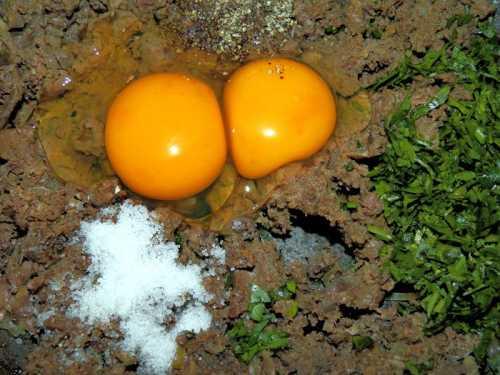 Briose drob cu oua de prepelita