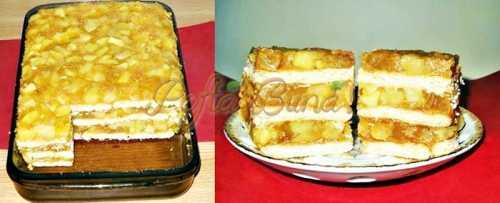Prajitura cu mere si biscuiti si budinca (fara coacere)-Porceanu Gica