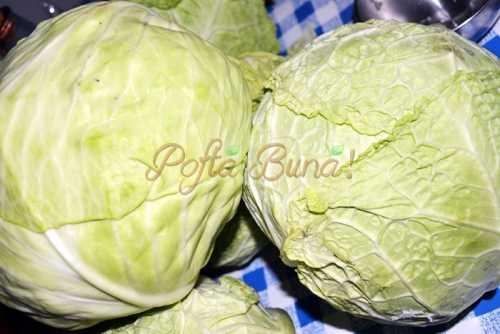 Mancare-de-varza-proaspata-pofta-buna-cu-gina-bradea (1)