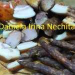 Afumaturi Daniela Irina Nechita 150x150 - Cum se face afumarea?