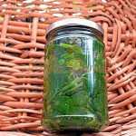 Spanac, stevie, urzici la borcan pentru iarna