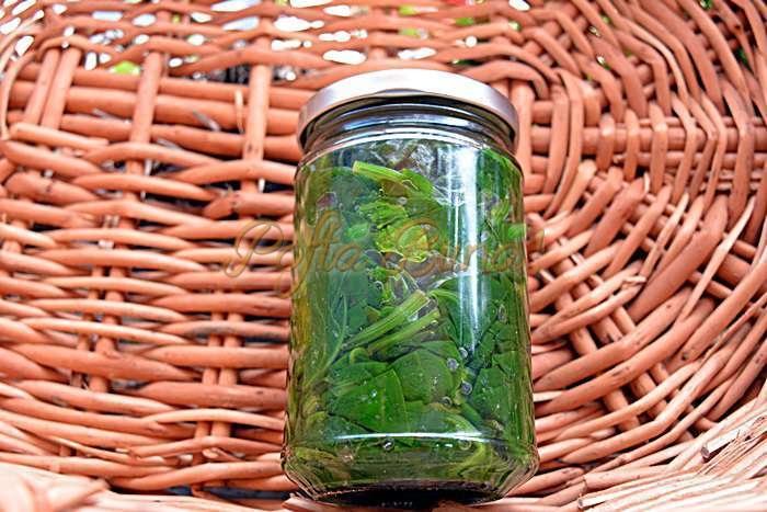 Spanac stevie loboda leuda urzici la borcan pentru iarna pofta buna cu gina bradea 1 - Spanac la borcan pentru iarna