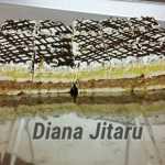 Prajitura cu mere fara coacere Diana Jitaru 150x150 - Prajitura fara coacere cu mere, biscuiti si budinca