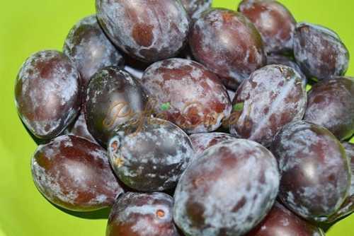Galuste, gomboti cu prune, reteta clasica