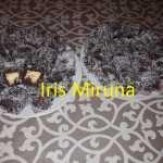 Tavalita cu nuca de cocos Iris Miruna 150x150 - Prajitura tavalita cu nuca si cocos - Lamington