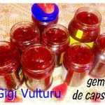 gigi vul 150x150 - Gem de capsuni reteta simpla