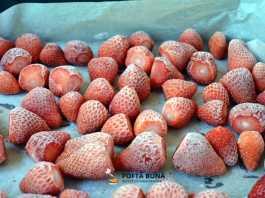 Capsune sau alte fructe la congelator, pentru iarna