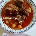 """Borsan Livia 2 150x150 - Concurs pentru prietenii blogului """"Pofta buna, retete cu Gina Bradea"""""""