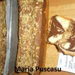 Maria Puscasu Chec 150x150 - Gatim gustos cu Gina Bradea, concurs decembrie 2017