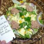 Maria Puscasu Salata de ton 150x150 - Gatim gustos cu Gina Bradea, concurs decembrie 2017