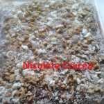 negresa glazurata nicoleta cracea 150x150 - Negresa pufoasa cu glazura si nuci, cea mai buna si mai simpla reteta