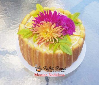 Tort Diplomat reteta clasica cu fructe, piscoturi si frisca naturala