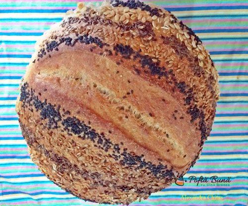 paine cu maia si seminte reteta simpla 1 500x416 - Paine cu maia naturala si seminte