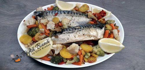 Macrou la cuptor cu legume reteta dieta rina gina bradea 5 500x243 - Macrou la cuptor cu legume, reteta pentru dieta Rina