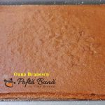 prajitura inteligenta cu cacao 4 150x150 - Prajitura inteligenta cu cacao