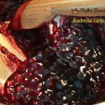 zefire cu fructe de padure reteta pas cu pas 3 150x150 - Zefire cu fructe de padure
